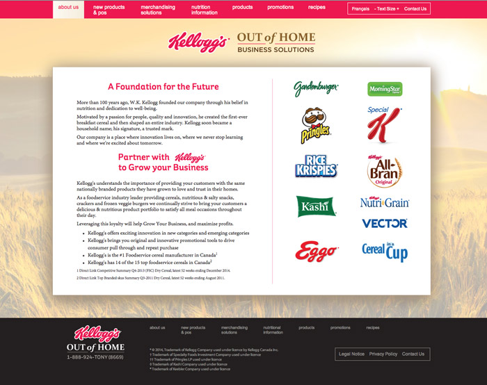 Kelloggs-website2