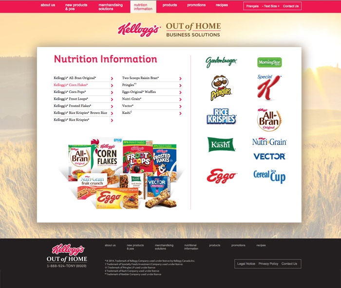 Kelloggs-website4