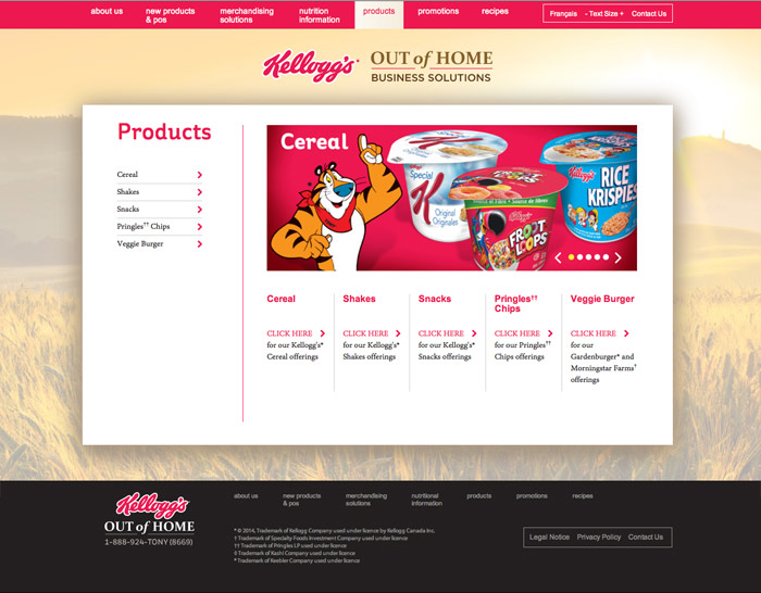 Kelloggs-website5